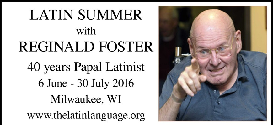 Latin-summer-2016-poster-870-x-400-slider